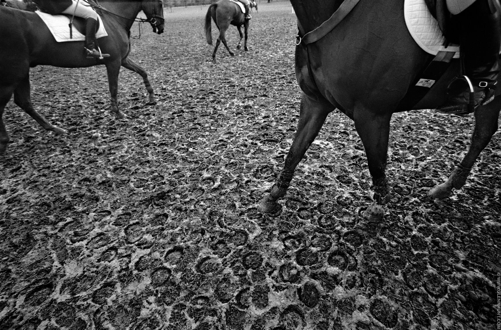 Horses at the Windsor Horse Trials, Windsor, England.