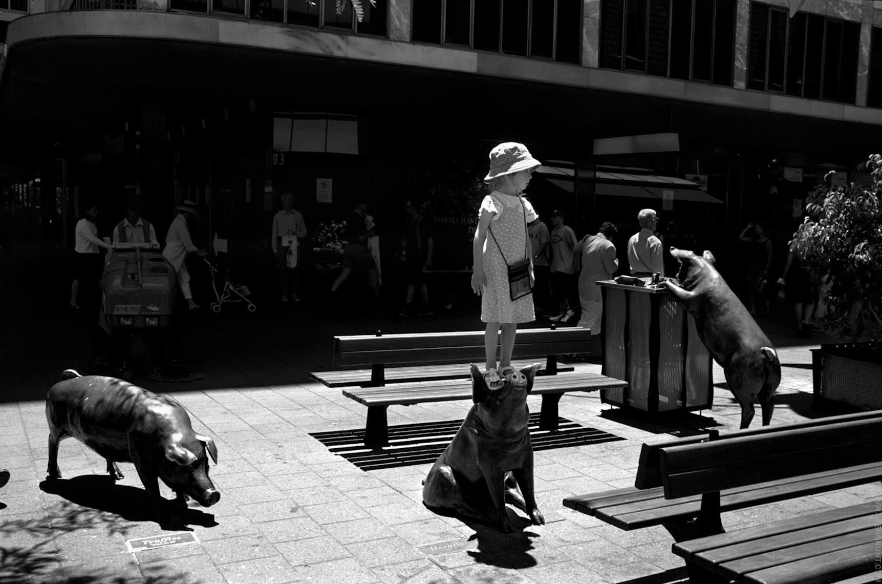Adelaide Street Photography