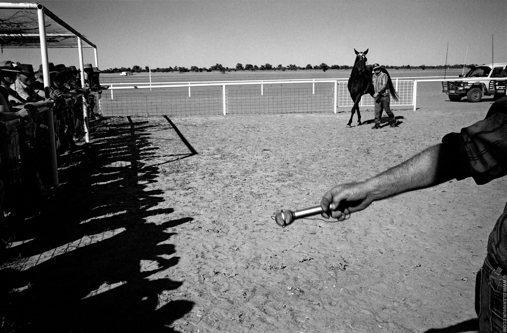 Horses in the Australian outback. Birdsville Races, Lightning Cr