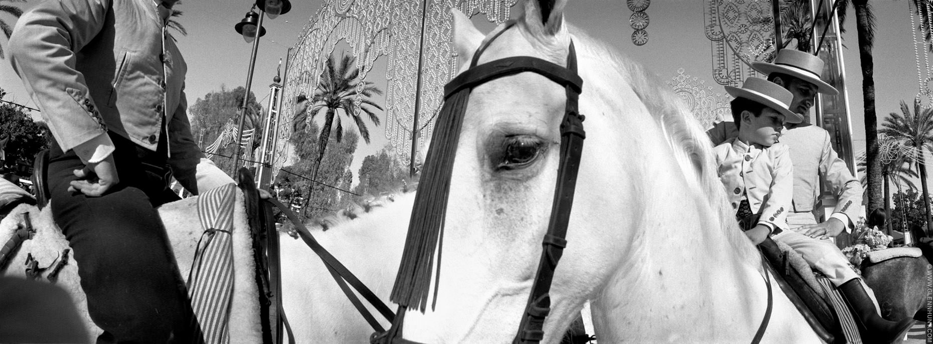 Horses at the Feria del Caballo and the Royal School of Equestrian Art ( Fundación Real Escuela Andaluza del Arte Ecuestre) , Jerez, Spain
