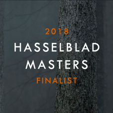 2018 Hasselblad Masters Finalist