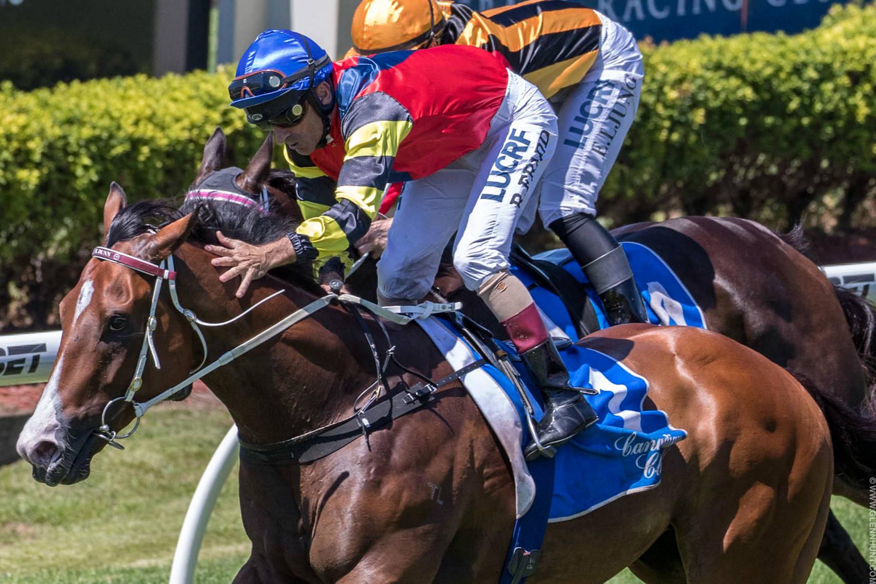 Australian Horse Racing Photographers