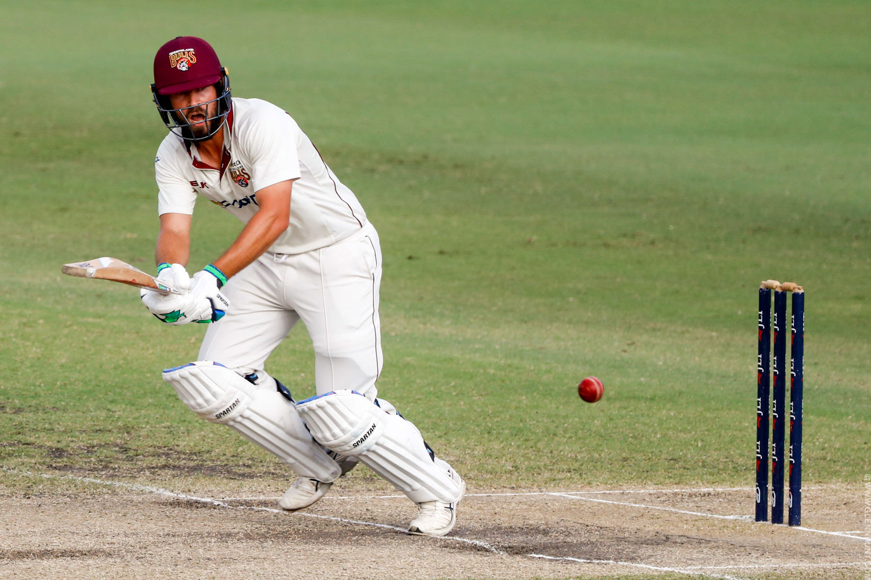 CRICKET SHEFFIELD SHIELD FINAL QLD TAS